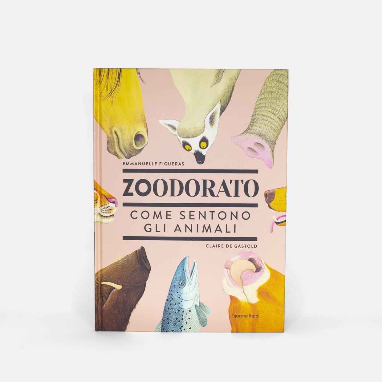 T-shirt DADDY SINCE + ZOODORATO kit