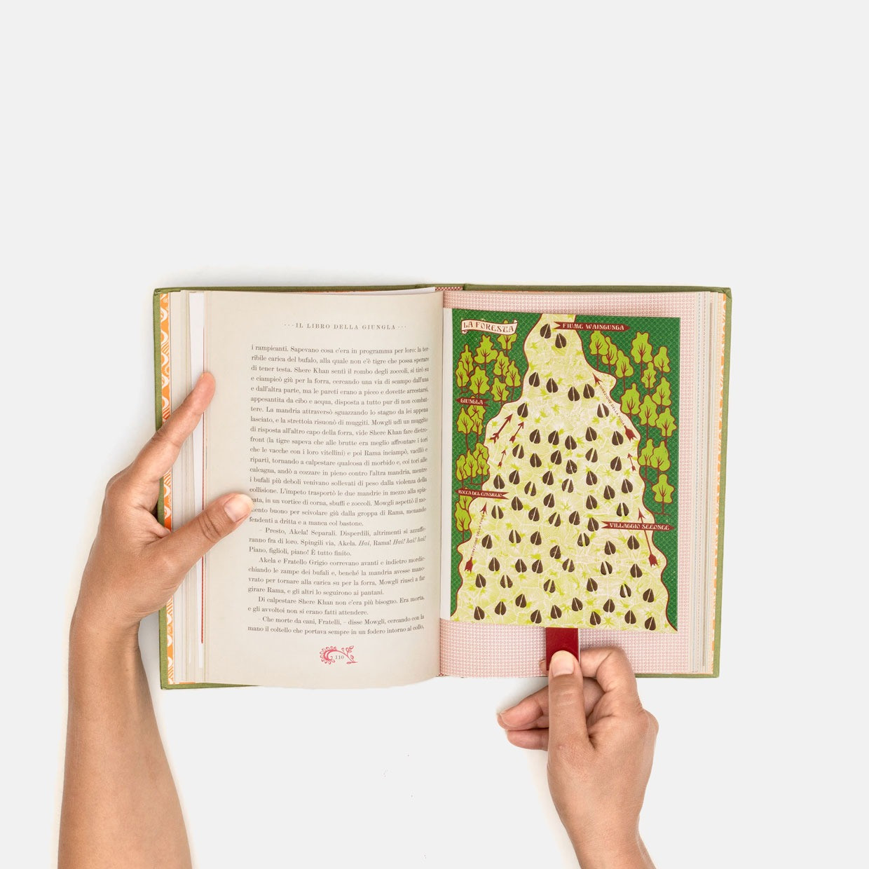 T-shiort Orso Baloo + libro pop-up