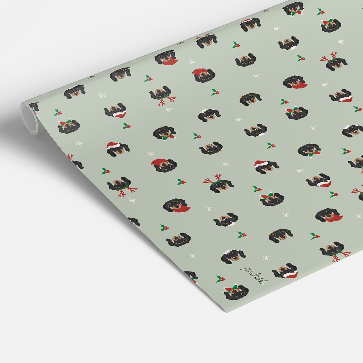 Sparavento wrapping paper